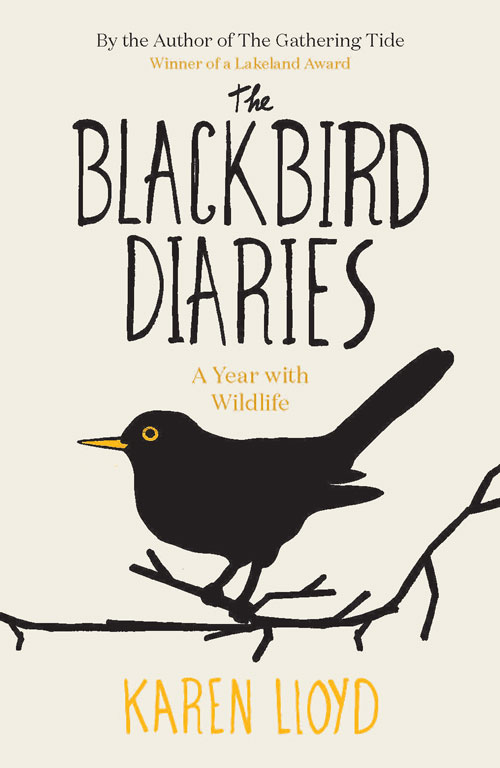 Blackbird Diaries
